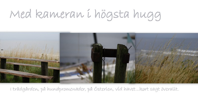 Med kameran i hgsta hugg...