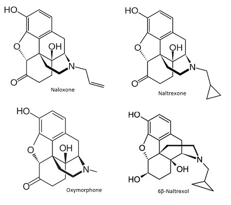 naloxone+naltrexone+oxymorphone.jpg