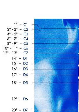 La mappa spinale del Tempo (AgeGate Code)