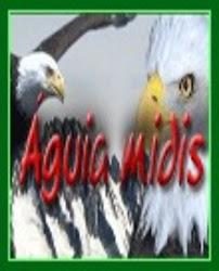 (www.aguiamidis.com)