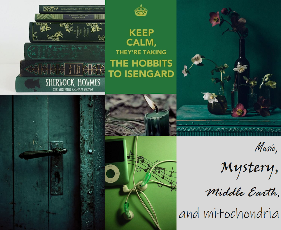 Music, Mystery, Middle Earth, and Mitochondria