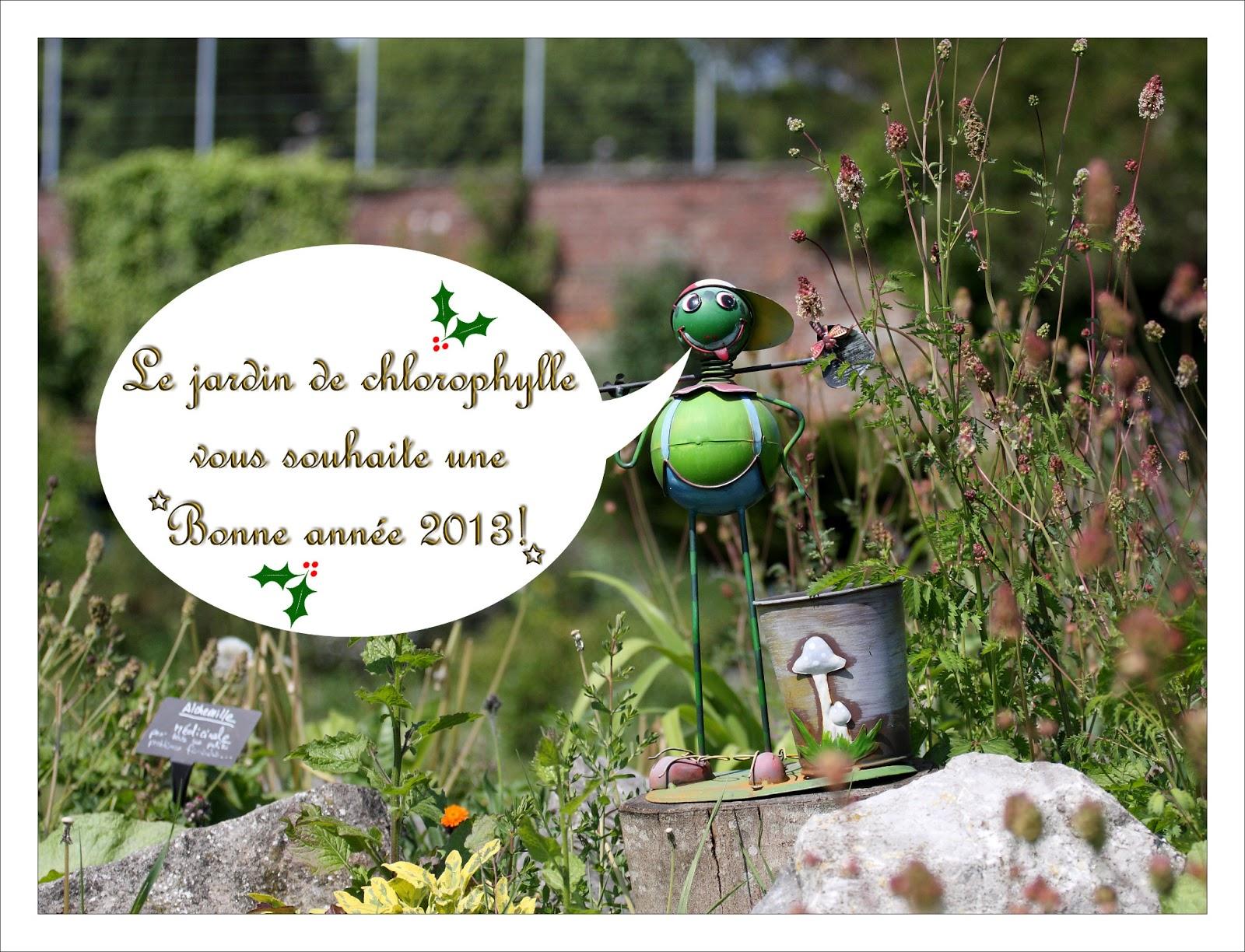 Le blog du jardin de chlorophylle janvier 2013 for Espace chlorophylle