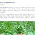 Plantines de #Mburucuyá  y Presentacion #LaEraCreativa en #Posadas #Misiones
