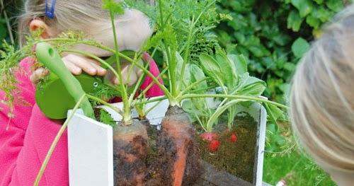 6x Inspirerende Boomhutten : Cyntuinen tuinontwerp & advies: hoe planten groeien leuk voor kinderen