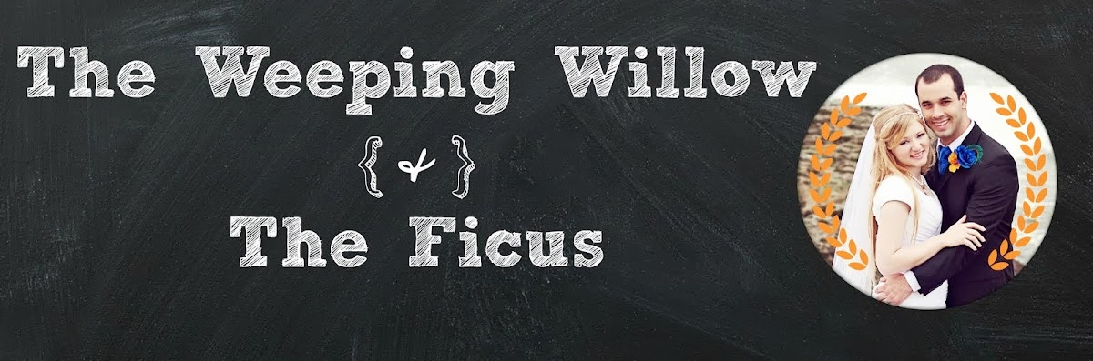 The Weeping Willow and The Ficus
