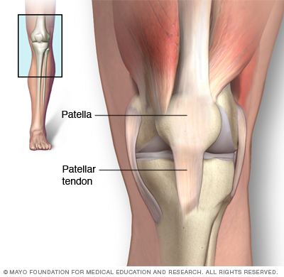 The Aging Athlete: Raise Your Hand if You Have Knee Pain