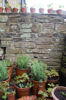 Plants on and at the side of the cloister wall