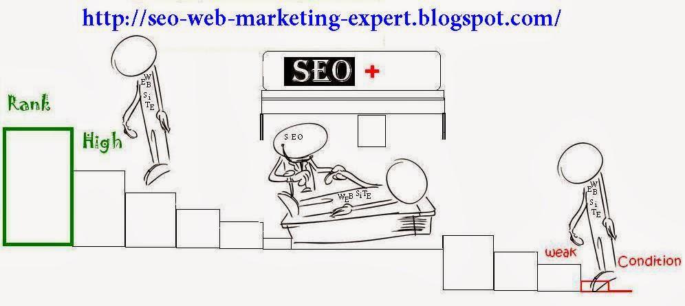 SEO, Web Marketing Expert Online Help