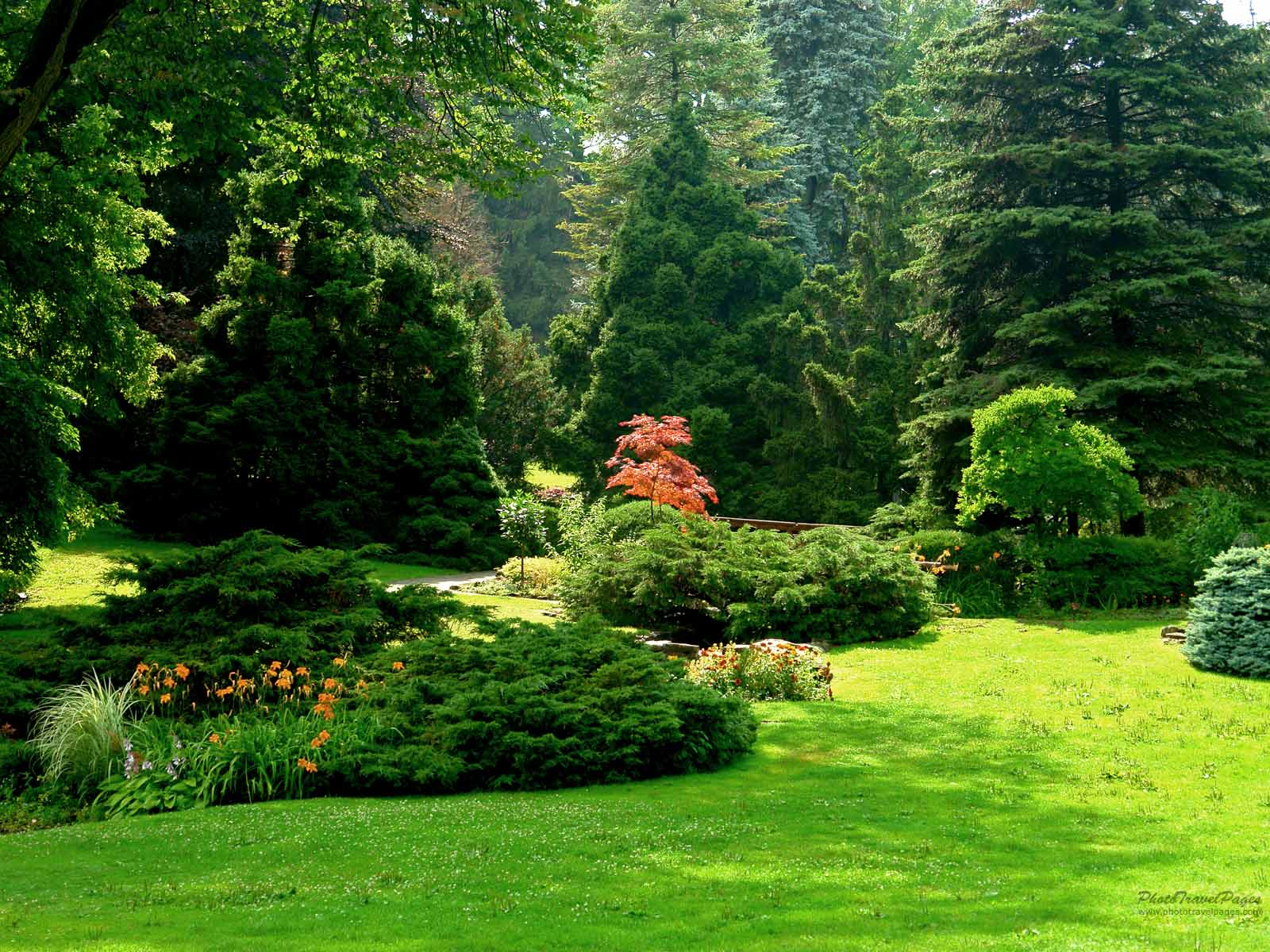 http://3.bp.blogspot.com/-HgBHEvF7vNs/Tbn7QggRfCI/AAAAAAAAAV0/QfGMgZJagc8/s1600/suny+garden+%25283%2529.jpg