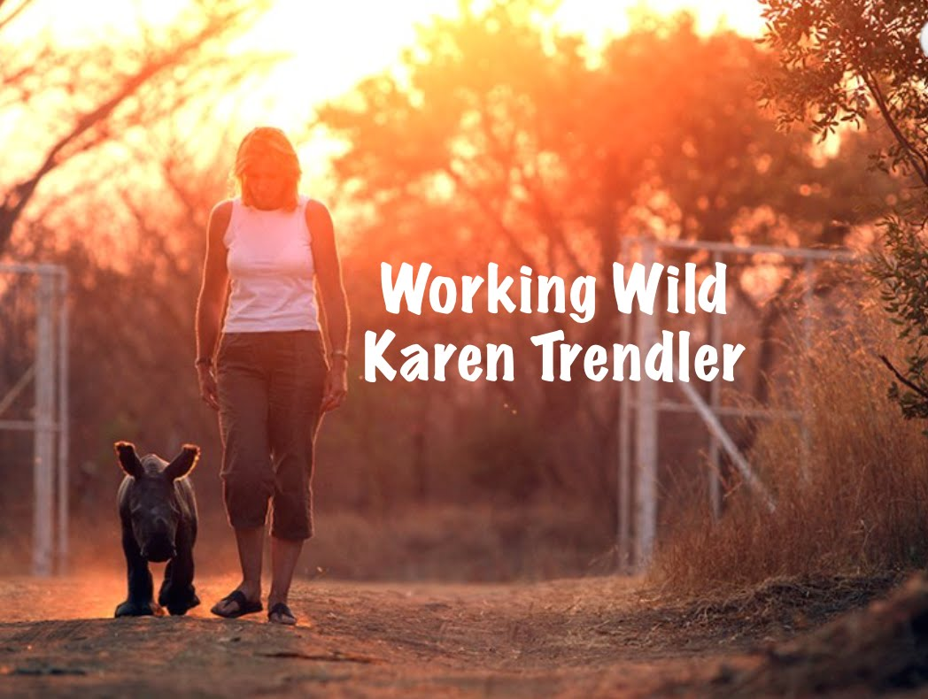 WORKING WILD Karen Trendler
