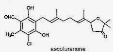 Ascofuranone (AF):  a new PAK-blocker