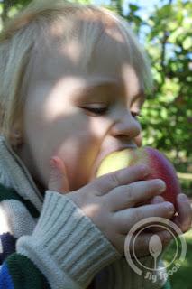 Eating an apple at Tougas Farm
