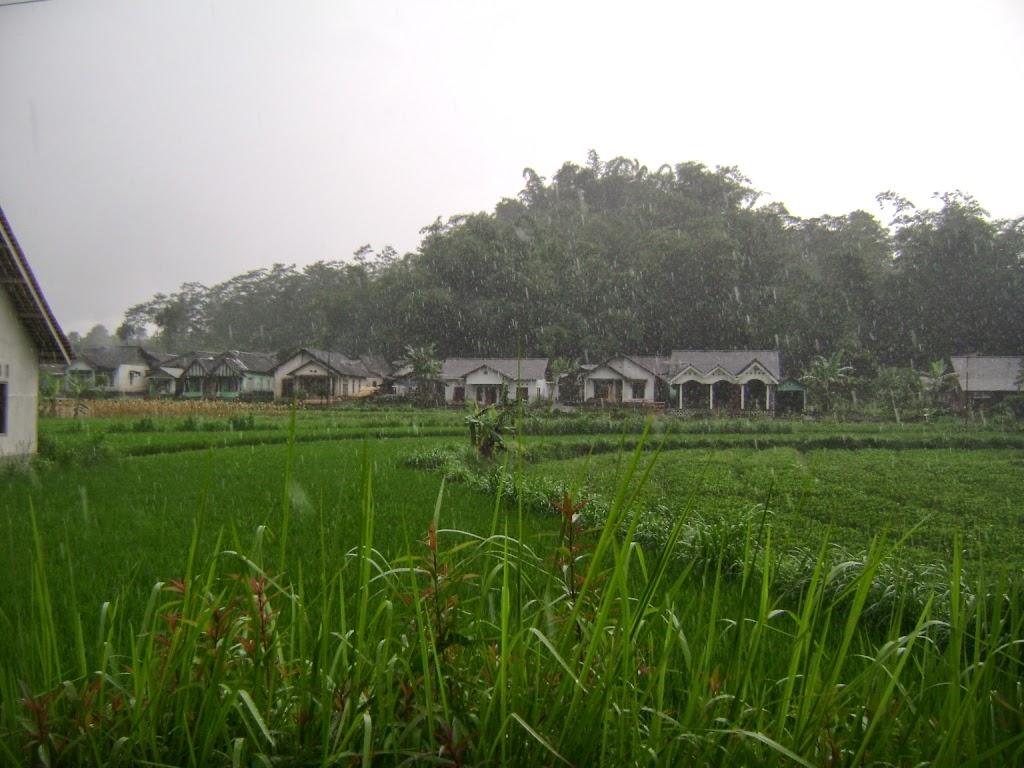 Jual Tanah di Temanggung