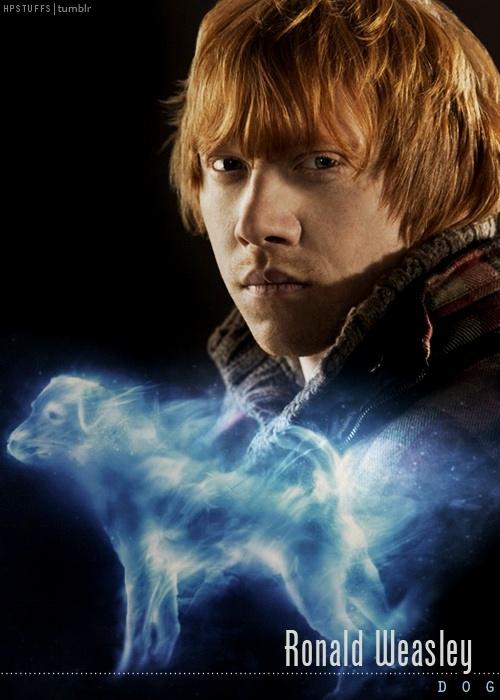 Ron weasley patronus