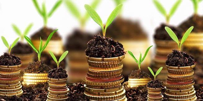 5 Macam Investasi Menguntungkan dan Menjanjikan Saat Ini