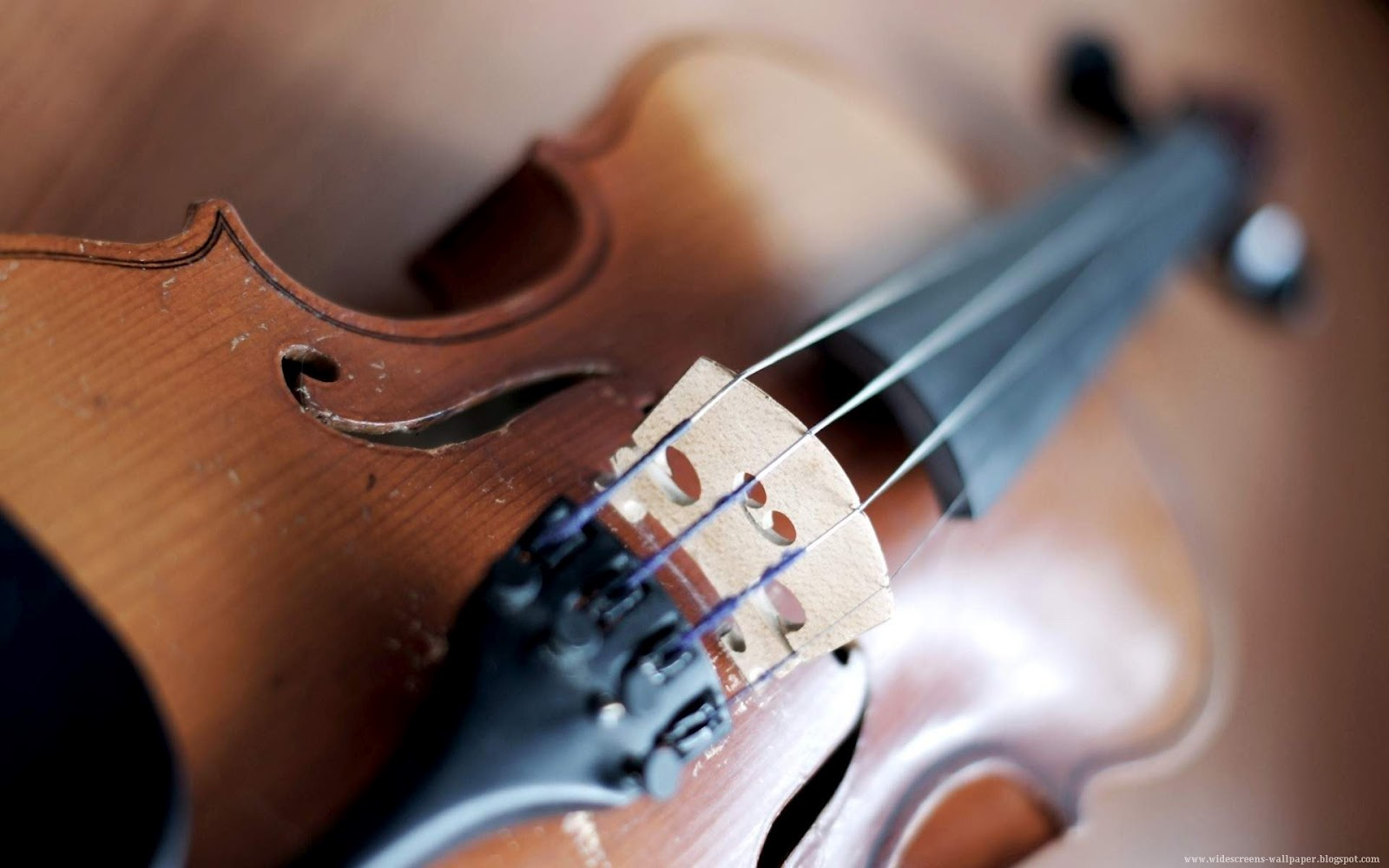 New violin gallery collection - Music Violins Wallpaper