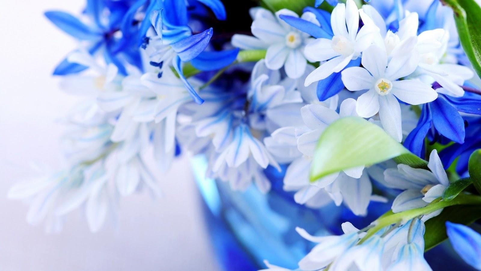 http://3.bp.blogspot.com/-HhQhEH5q0_E/UCqXsuCghAI/AAAAAAAADwc/ACnUr7uM7mM/s1600/natural-flowers-bouquet-1920x1080.jpg