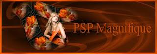 http://www.pspmagnifique.nl/