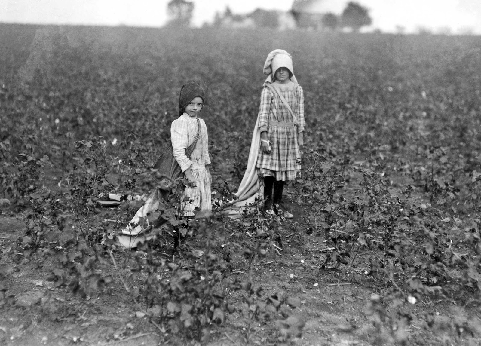 an analysis of the farmers discontent in the 1800s Free essays on winter discontent agrarian discontent in the late 1800's - why the farmers were wrong cultural analysis of the coldest winter ever.