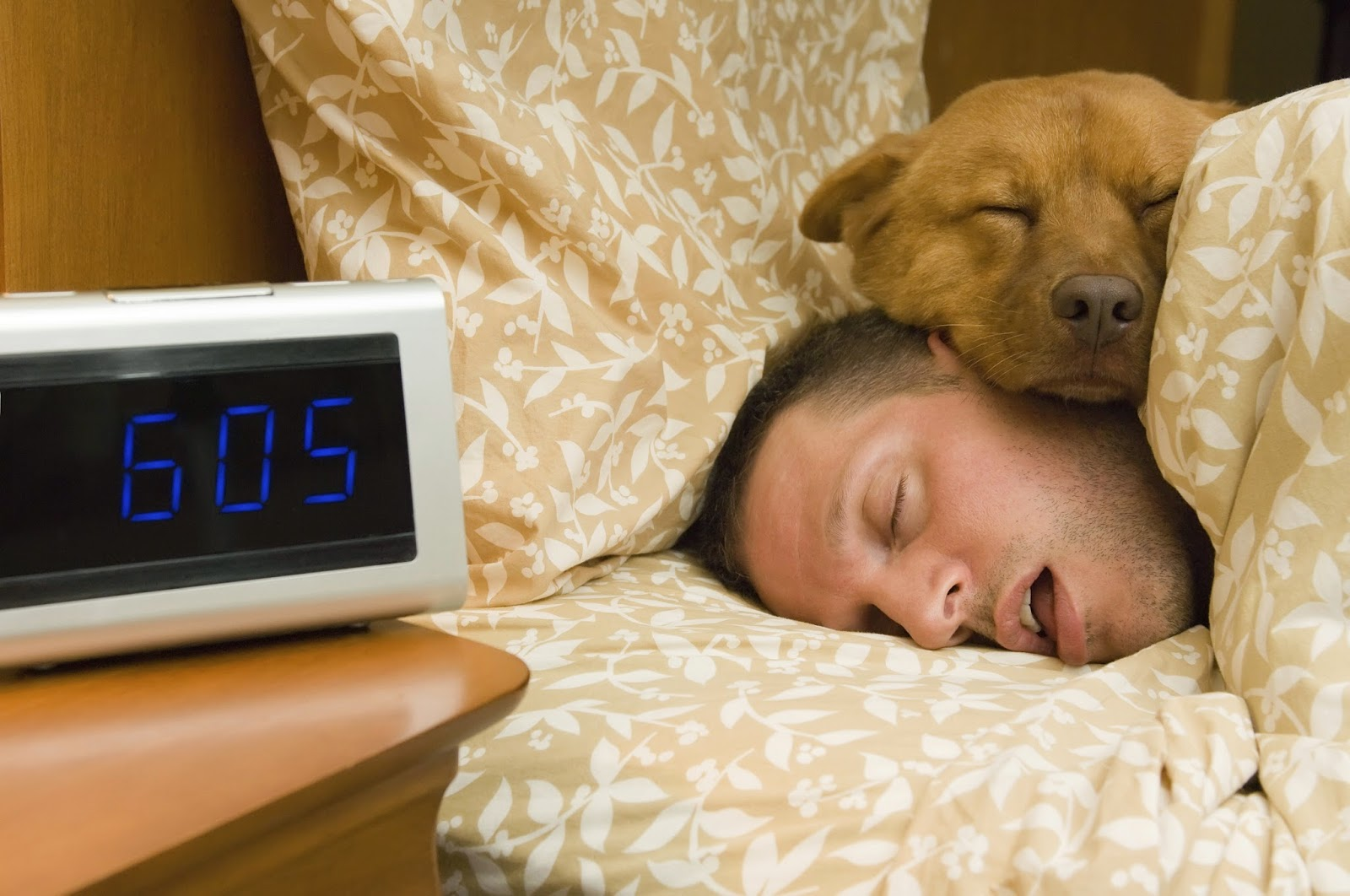 Man and dog sleeping in