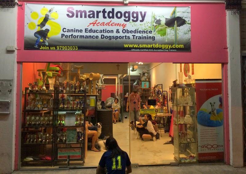 Smartdoggy Academy