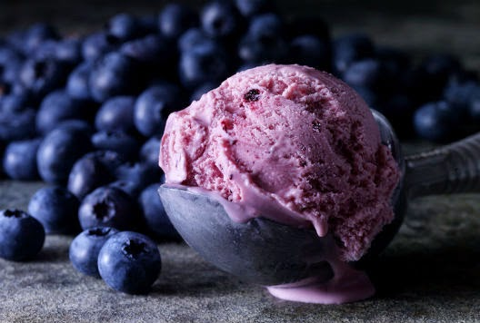 How To Do Stuff: Recipe: Homemade Blueberry Ice Cream