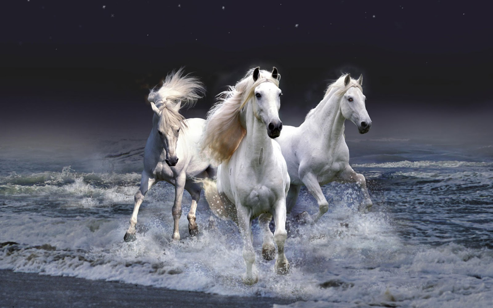 http://3.bp.blogspot.com/-HiH2A3smxTg/ULvDFXx2c_I/AAAAAAAAN7A/0juDTUVRO74/s1600/mystic_horses-wide.jpg