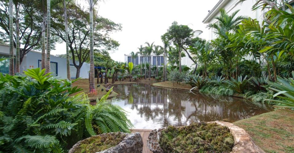 flores tropicais jardim:Karla Santos Paisagismo: SAMAMBAIAS: DINAMISMO NOS JARDINS