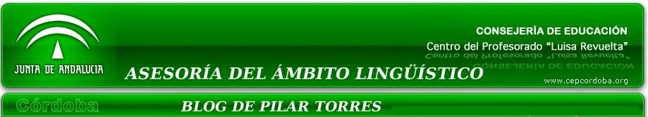 Blog de Pilar Torres