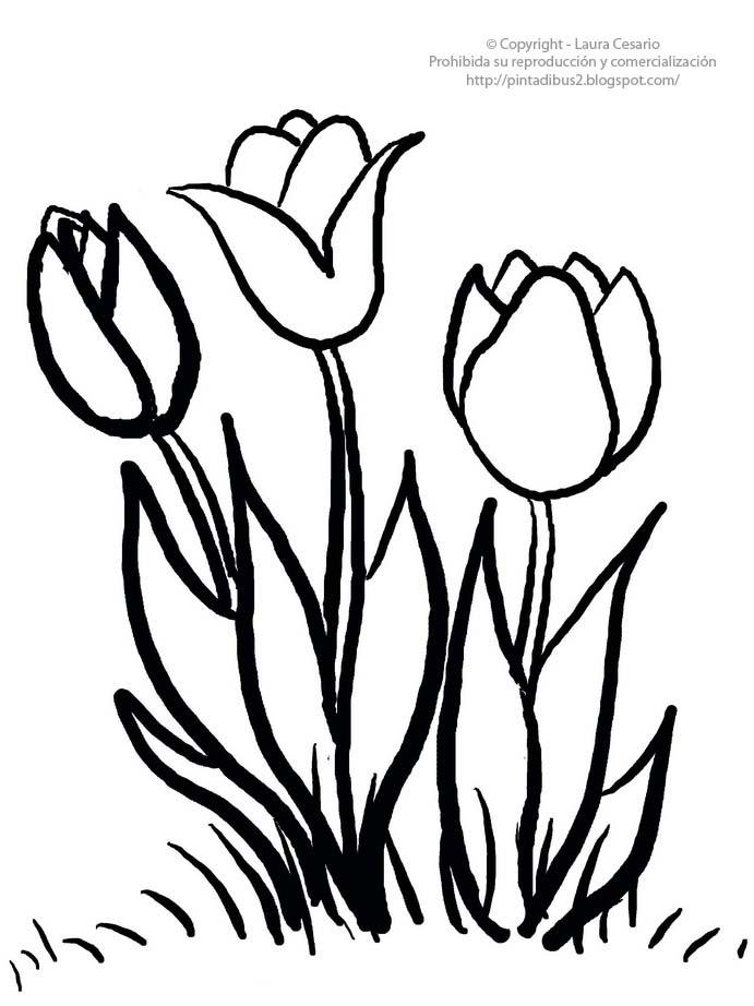 Bonito Páginas Para Colorear En Blanco Y Negro De Flores Bosquejo ...