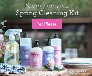Free Spring Cleaning Kit