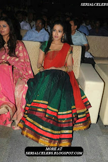 Catherine Tresa in Half saree