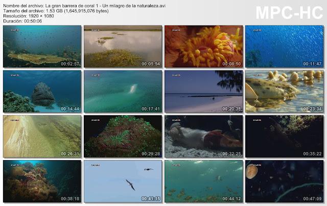 BBC|La Gran Barrera de Coral |3/3| FullHD |1080p| Mega