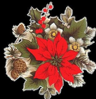 una opcin para decorar el blog o las pginas web en las fechas navideas es colocar un gif animado de las famosas y flores de pascua o flores