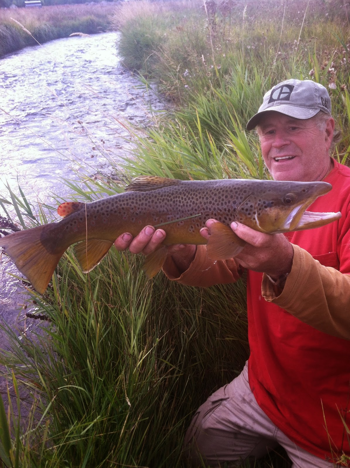 gold mining flyfishing