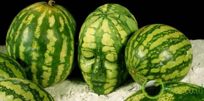 Kepala Semangka