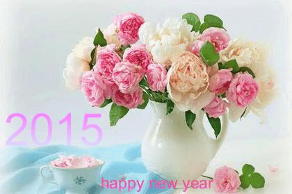 HAPPY 2015 NAW YEAR 2015