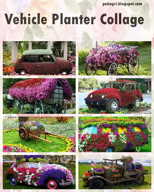 Vehicle Planters Collage
