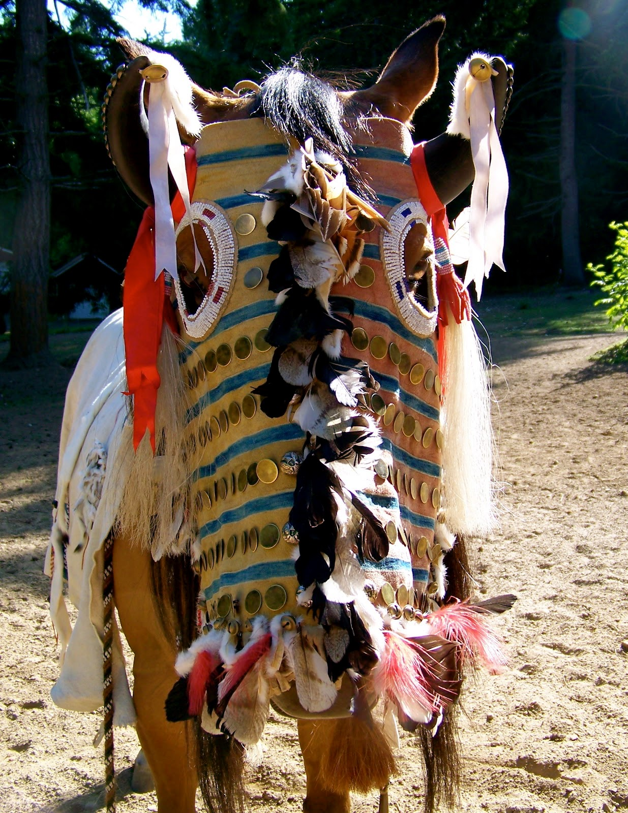 White wolf amazing native american nez perce horse for What crafts did the blackfoot tribe make
