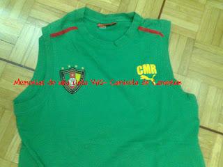 camiseta Puma Camerún sin mangas