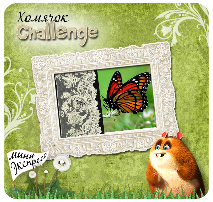 экспресс-задание № 10 - Бабочки и кружево