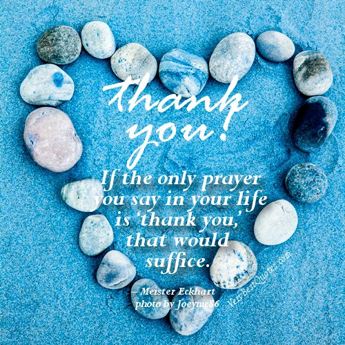 Thank You Quotes For Friends | 30 Thank You Quotes Pelfusion Com