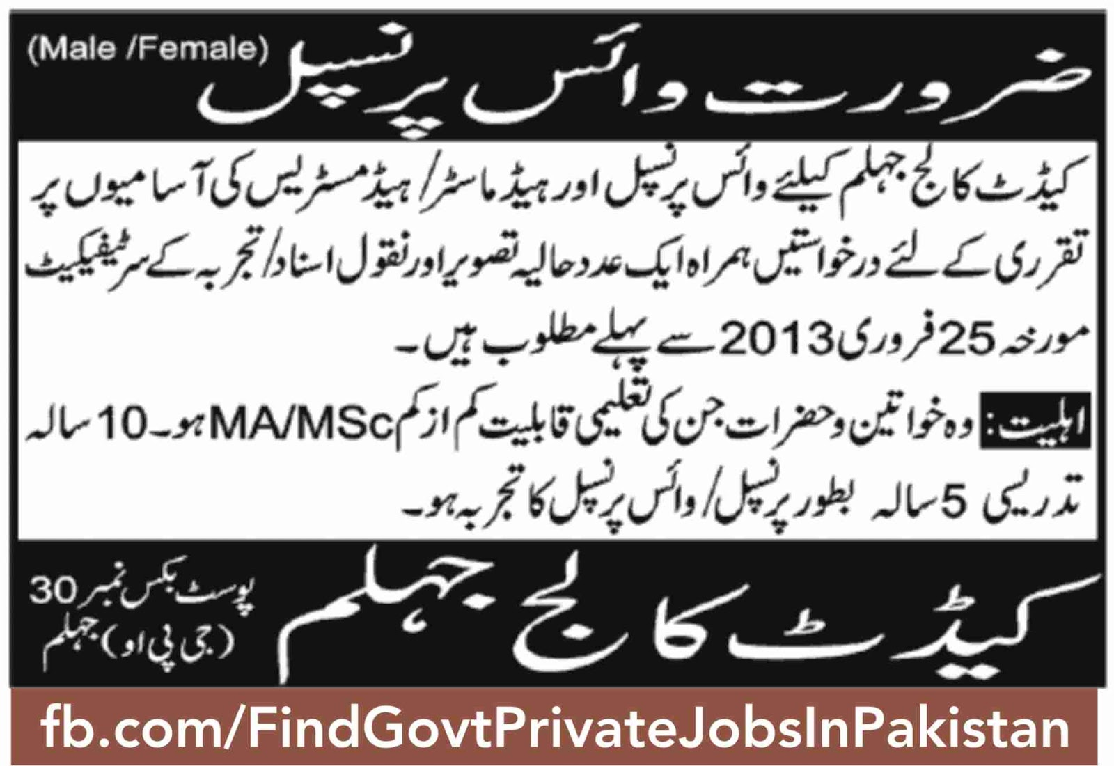 principal job ads jang sunday