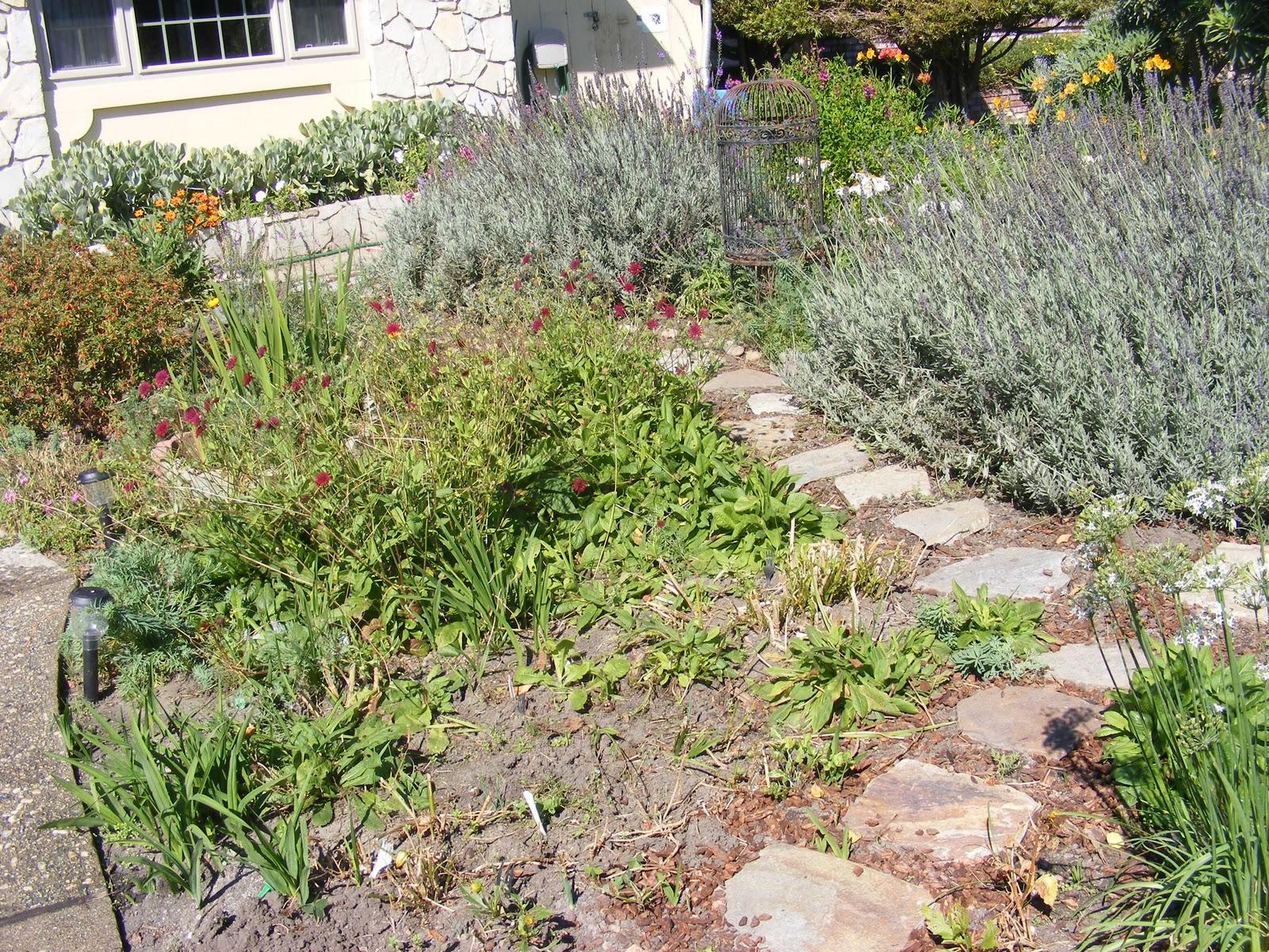 harriett 39 s gardens stepping stones in garden