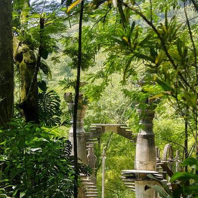 Invernablog las pozas de xilitla o el jard n escult rico for Jardin xilitla