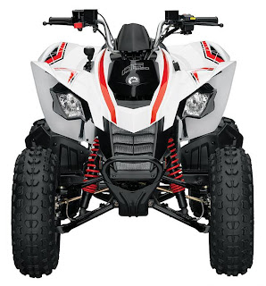 Can Am DS 250 Youth Sporty ATV picture
