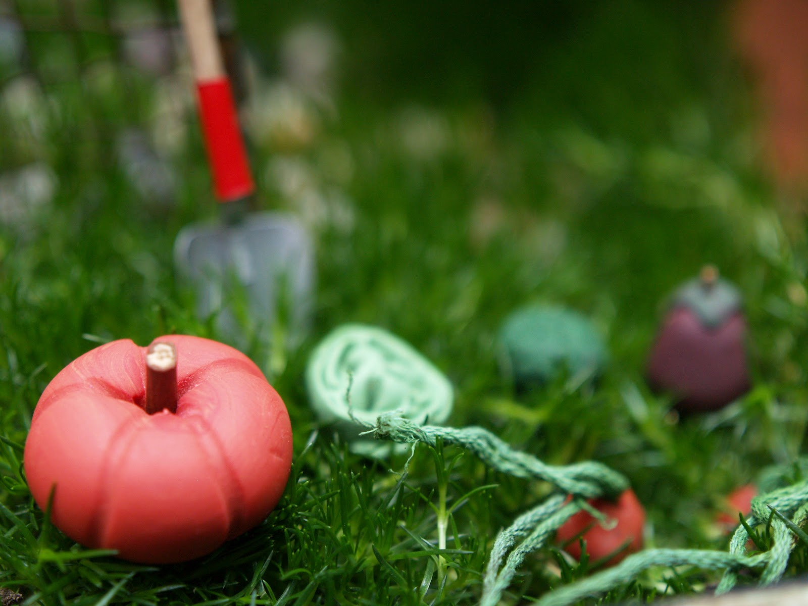 fairy garden archives the magic onions