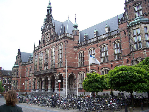 university top escorts in amsterdam