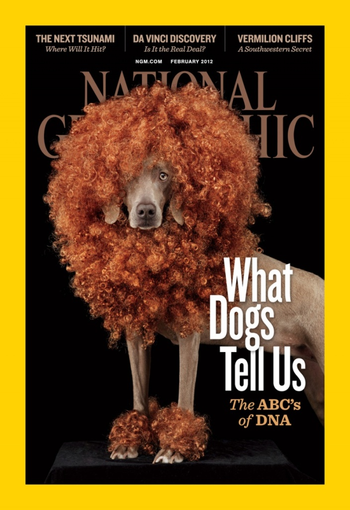 Wow my photos was published in national geographic for How to get my photographs published