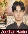 http://72jafry.blogspot.com/2014/03/zeeshan-haider-nohay-2007-to-2015.html